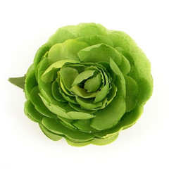 cats-like-us-green-ranunculus-hair-flower-1_medium.jpeg
